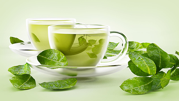 Dùng trà xanh để giải bia rượu